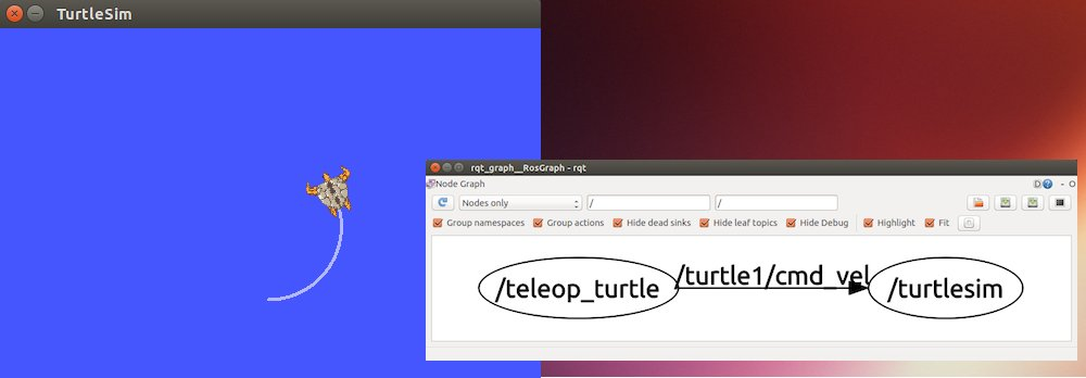 turtle_screen2